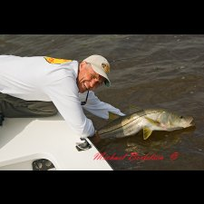 Light Tackle Saltwater Images - photo 6