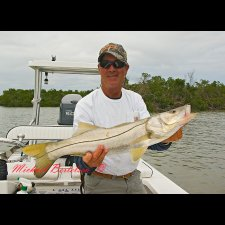 Light Tackle Saltwater Images - photo 7